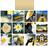 Поиск изображений по цветам и визуально.