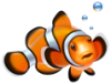 Покормите рыбок и успокойте свои нервы.