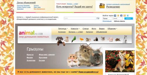 Animal.ru - сайт о домашних животных