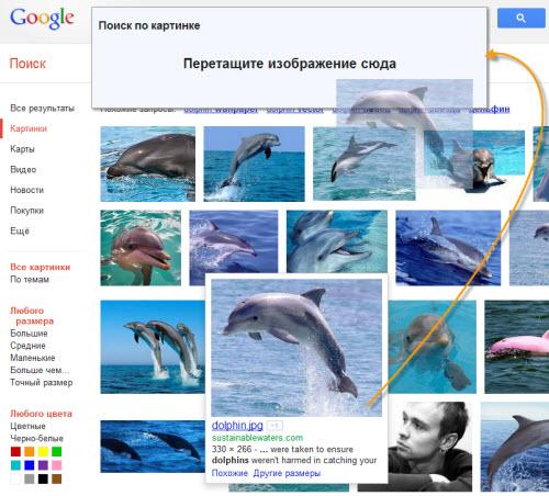 Расширенный поиск картинок google