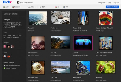Flickr представила функцию Uploadr на основе HTML5 для загрузки фото