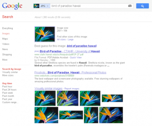 Google �������� ������ Search by Image