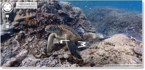 Google запустила сервис просмотра подводных панорамных изображений