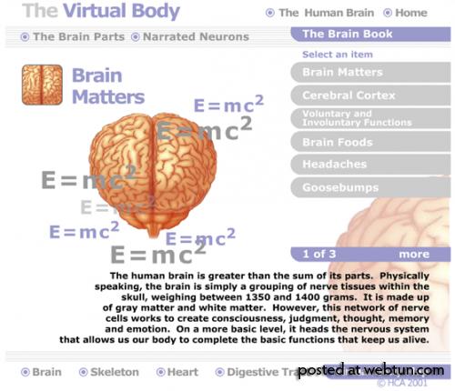 3 виртуальных тура по человеческому телу