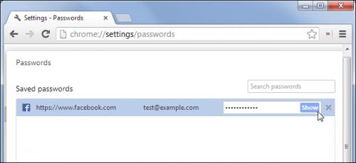 Как предотвратить просмотр паролей в вашем браузере