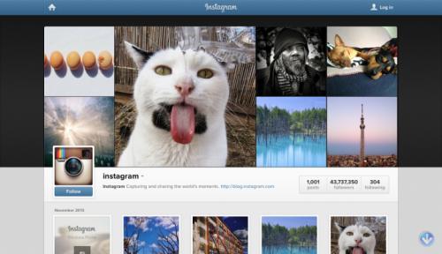 10 интересных Instagram-блогов, о которых вы не знали