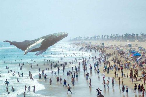 Google инвестирует $542 млн в разработчика технологии кинематографической реальности Magic Leap